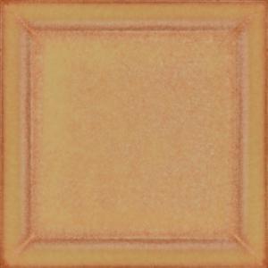 Clivia (37641)
